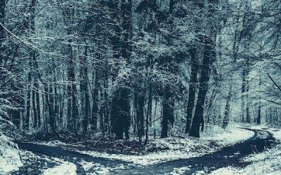 TRUE OR FALSE: INNER CRITIC EDITION EP#352